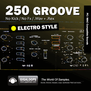 лупы Electro - Giga Loops 250 Grooves Electro Music Style