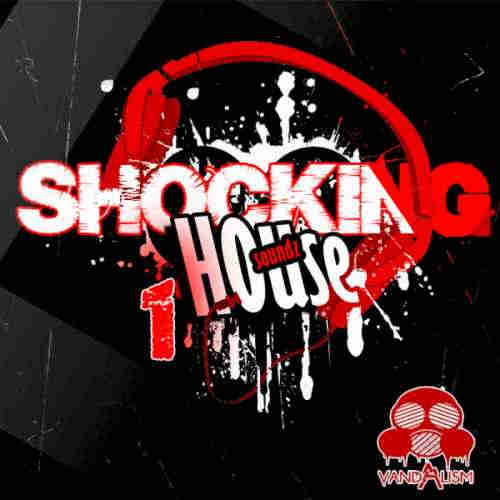 пресеты для Sylenth1 - Vandalism Shocking House Soundz 1 For Sylenth1