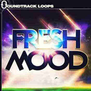 сэмплы ambient / chillout - Soundtrack Loops Fresh Mood