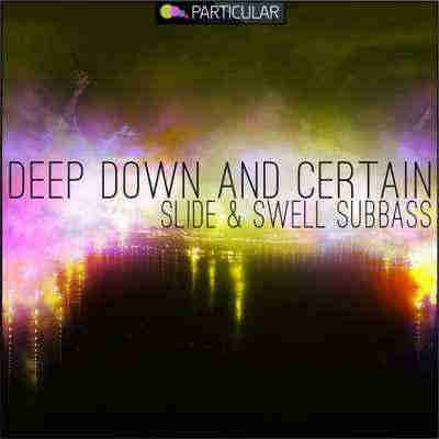 сэмплы house - Particular Audio Deep Down And Certain Slide And Swell Subbass (WAV)