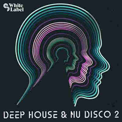 сэмплы house / disco - SM White Label Deep House and Nu Disco 2