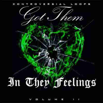 ������ hip hop - Controversial Loops Got Them In They Feelings Vol.2 (WAV/MIDI)
