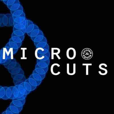 сэмплы tech house - Cycles and Spots Micro Cuts (WAV)