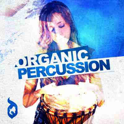 ������ house - Delectable Records Organic Percussion (WAV/REX)