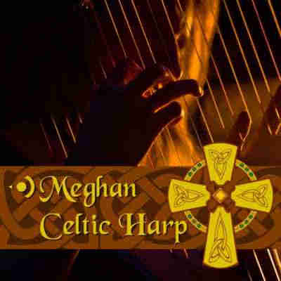 Precisionsound Meghan Celtic Harp (KONTAKT/EXS24/HALion/SoundFont) - библиотека сэмплов арфы