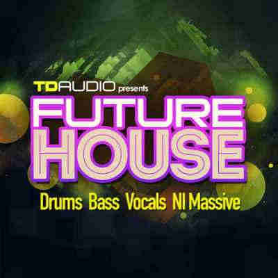 сэмплы house - Industrial Strength TD Audio Future House