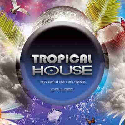 сэмплы tropical house - Pulsed Records Tropical House