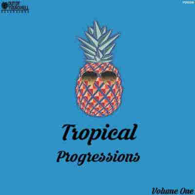 сэмплы tropical house - Out of Your Shell Tropical Progressions (WAV/MIDI)